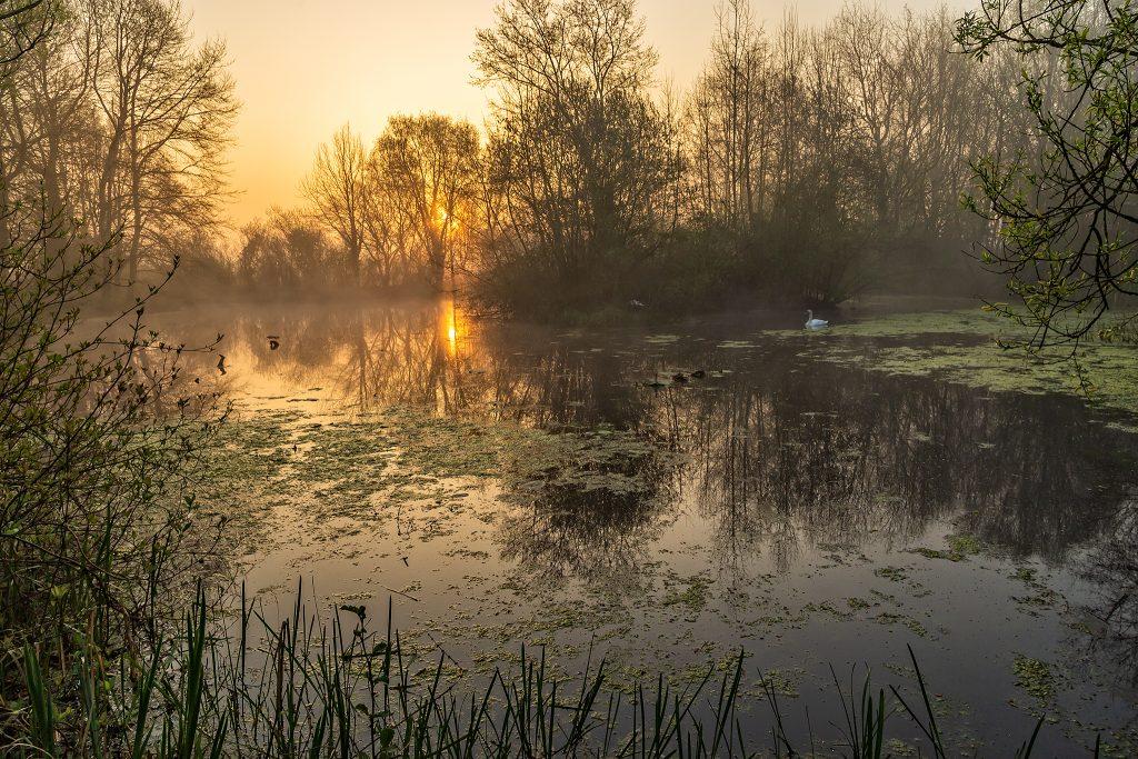 Sunrise near Thorney