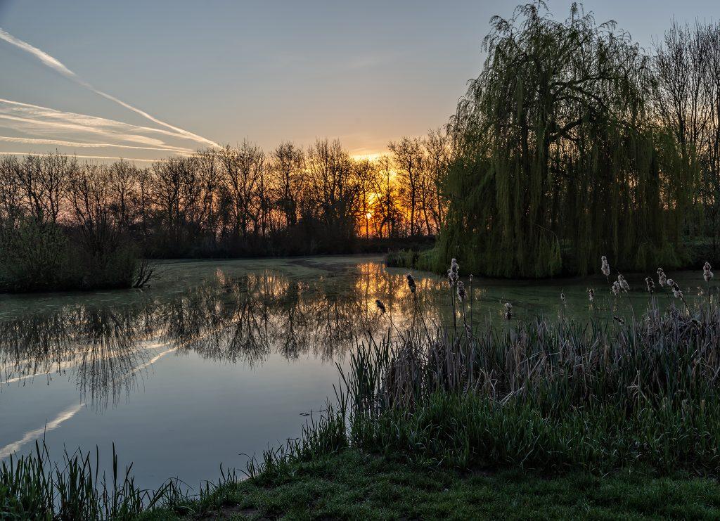 Sunrise Thorney Lakes