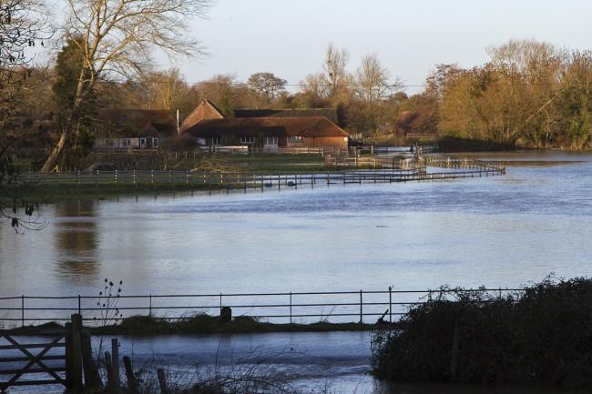 Bere Marsh Farm