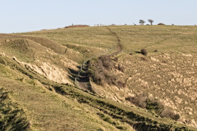 Track to the top of Hambledon hill