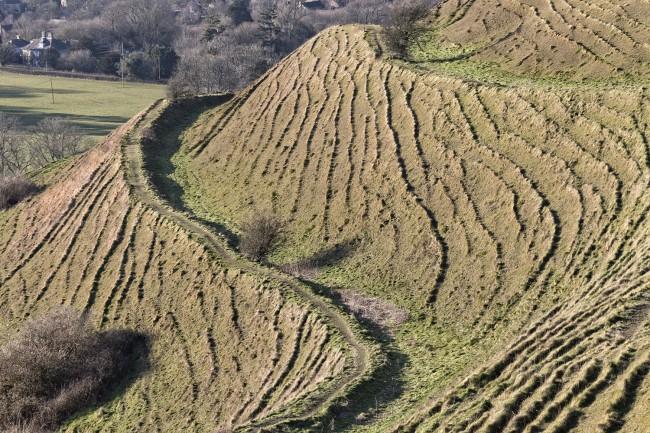 Hambledon hill ridges